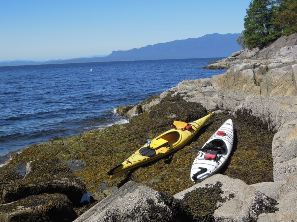 Beaches are great for landing kayaks, but sometimes they're just not there.  The kelp bed on this rocky shelf made for a great parking spot and a good jumping off point to explore the rocky shoreline.