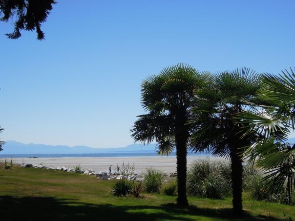 Gillies Bay